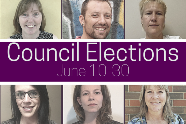 Council_Elections_2016